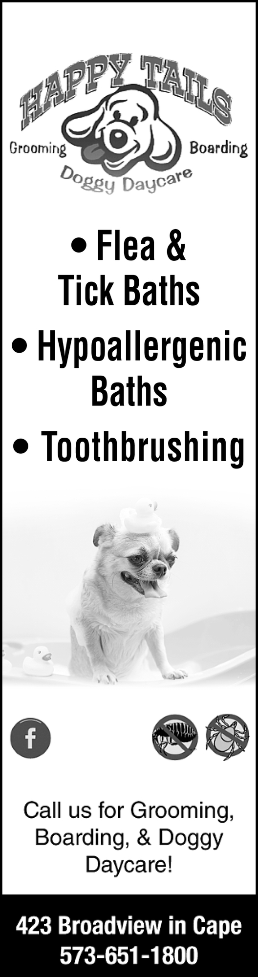 Flea & Tick Baths