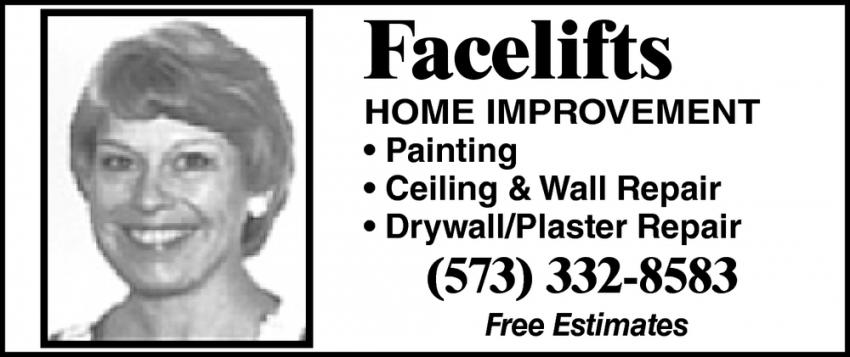 Ceiling & Wall Repair