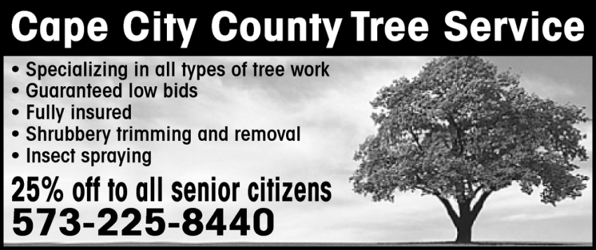Specializing in All Types of Tree Work
