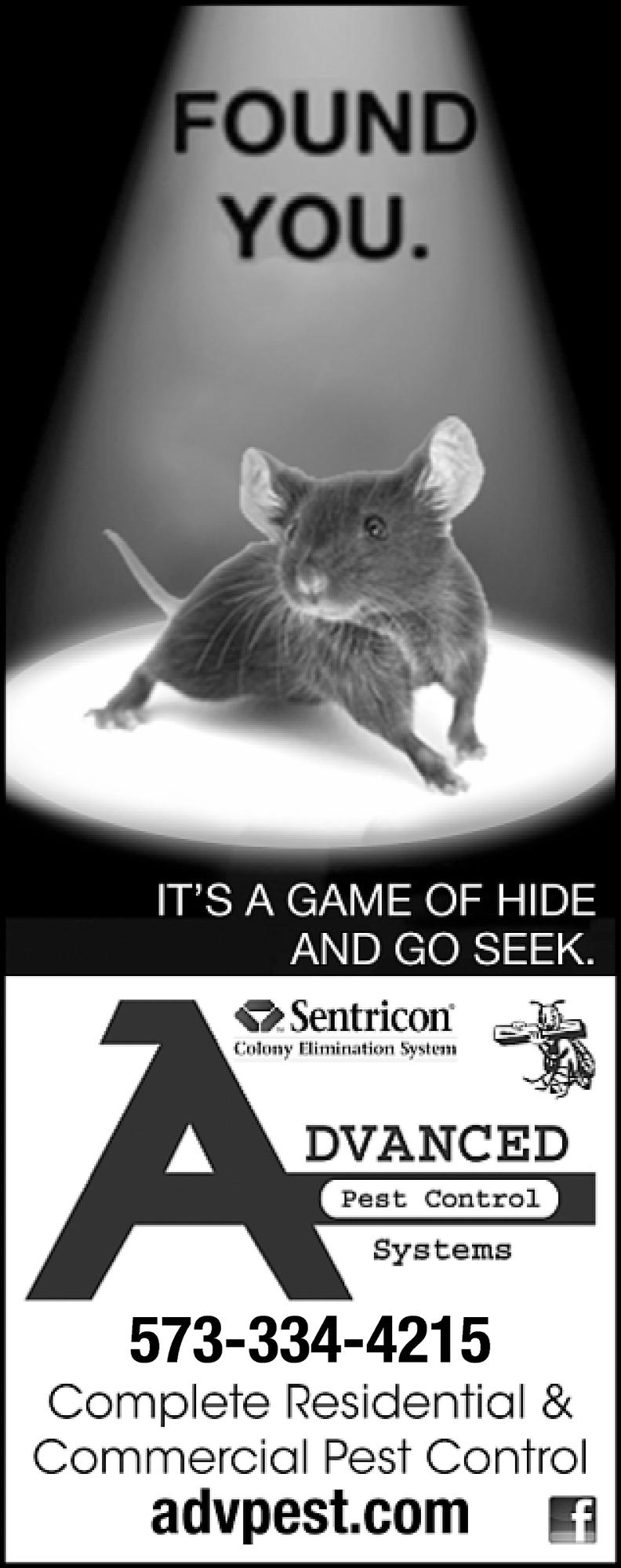 It's a Game of Hide & Go Seek